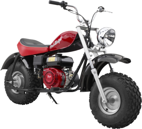 Mini Baja Mini Bike