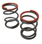 Racer Valve Spring - 18lb for Honda / Clone Engine