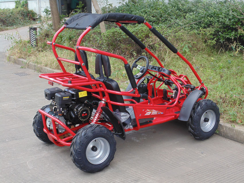 Buy the TrailMaster Mid XRX/R GoKart For Sale at