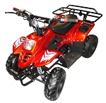 TrailMaster 110cc Coolster ATV