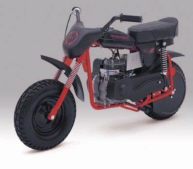 Manco Thunderbird Mini Bike
