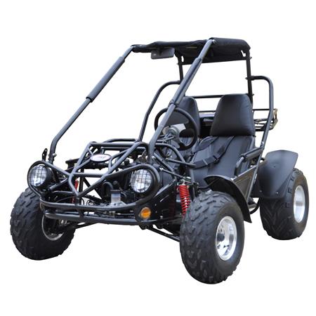 Trailmaster 150 XRS (Go Kart)