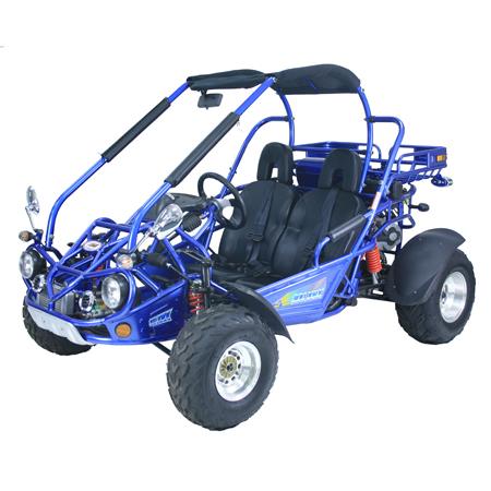 Trailmaster 300 XRX (Go Kart)
