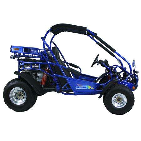 Trailmaster 300 XRX (Go Kart) | 300XRX | BMI Karts And Parts