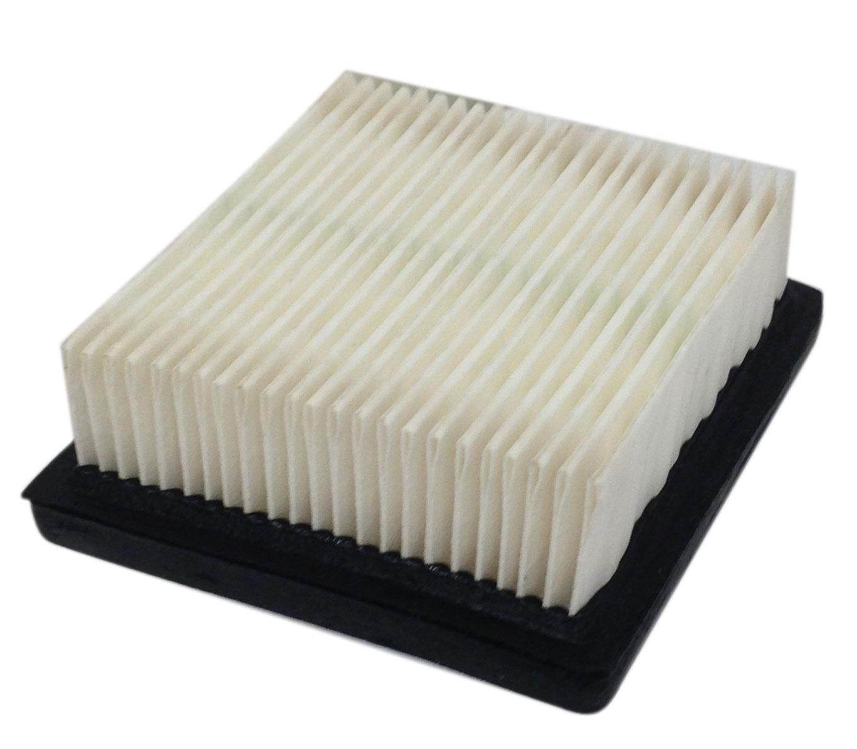 Tecumseh Air Filter