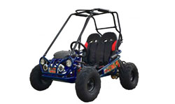 Trailmaster Mini XRS and XRX Go Kart Parts