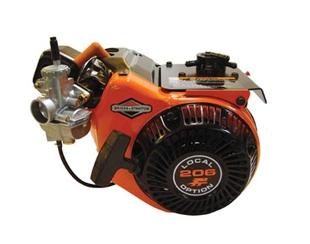 Briggs Animal Local Option 206 Racing Engine