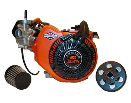 Briggs Animal Junior 206 Racing Engine