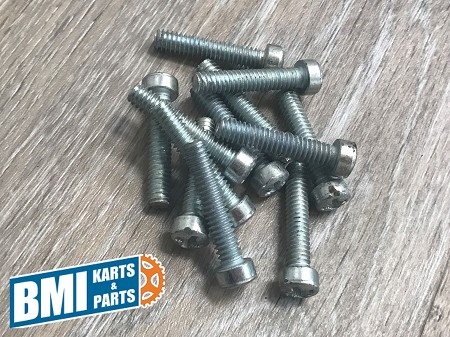 "Genuine Harley-Davidson, 1/4-20 X 1-1/4"" Phillips Head Screws (Set of 12)"