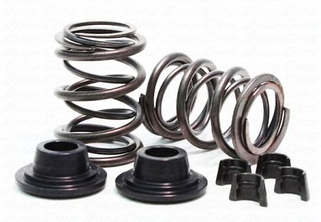 32lb Dual Valve Spring Set for Animal Engine