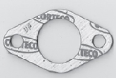 Briggs Animal Gaskets - Intake