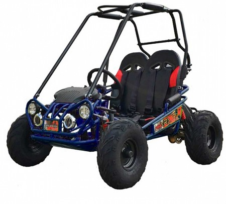 Trailmaster Mini XRX+ (Go Kart)